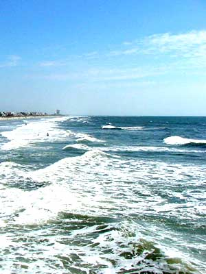 myrtle beach rent myrtle beach rentals 300x400